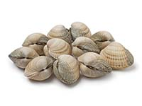 Cockles UK Delivery